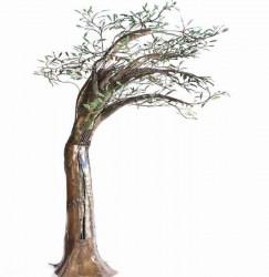 alirio-palacios-estudio-arbol-olivo-no3